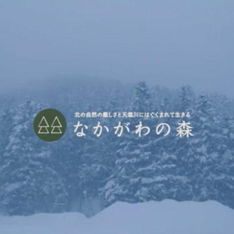 林業の祭典「KIKORI祭」予告編!